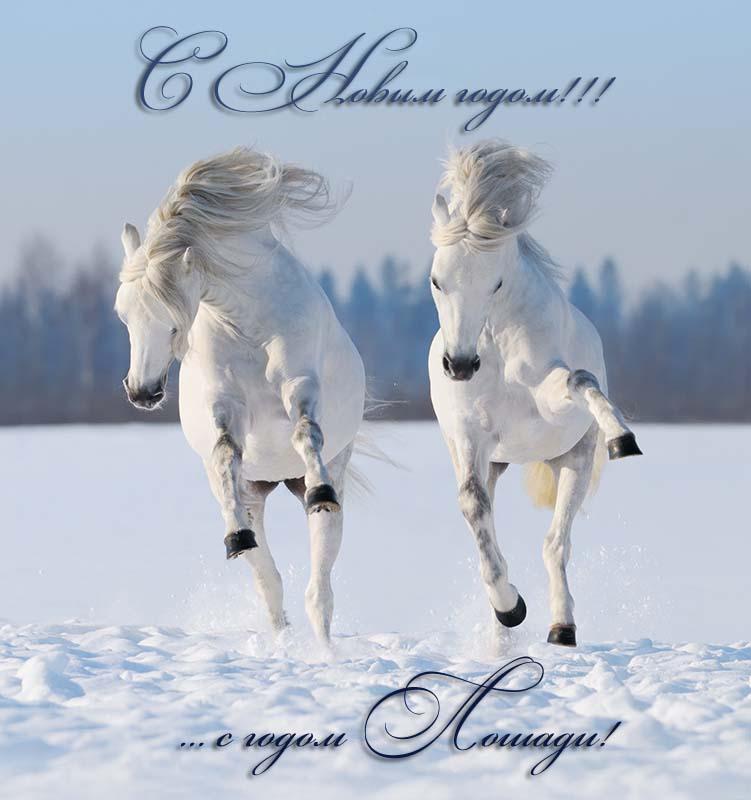 http://www.vse-pozdravleniya.ru/images/stories/ny/god_loshadi/1.jpg