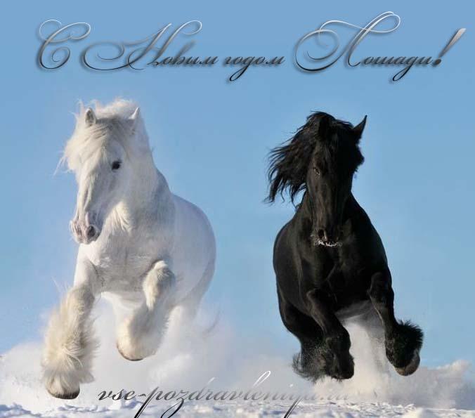 Открытки на день рождения с лошадью 29