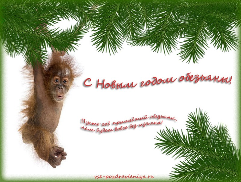 Открытки с поздравлением с годом обезьяны